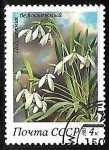 Stamps Russia -  Snowdrops