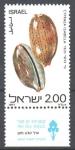 Sellos de Asia - Israel -  CONCHAS  MARINAS.  CYPRAEA  ISABELLA.