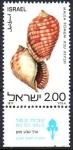 Stamps : Asia : Israel :  CONCHAS  MARINAS.  MALEA  POMUM