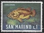 Stamps San Marino -  Atlantic Wreckfish