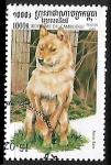 Sellos de Asia - Camboya -  Canis lupus familiaris