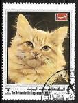 sello : Asia : Yemen : Gato domestico