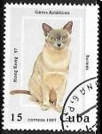 Sellos de America - Cuba -  Gatos asiáticos