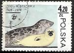 Sellos de Europa - Polonia -  Gray Seal