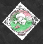 Stamps : Asia : Mongolia :  1393 - Champiñón, Tricholoma mongolica