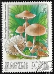Stamps : Europe : Hungary :  Marasmius oreades