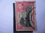 Stamps : Asia : Sri_Lanka :  King, George VI - Mujer Recolectando Látex del Árbol de caucho (Euforbiáceas)
