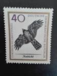 Stamps Germany -  Aves Rapiñas