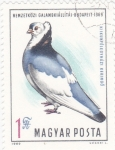 Stamps Hungary -  AVE-PALOMA