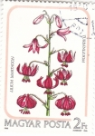 Stamps : Europe : Hungary :  FLORES- MARTAGÓN