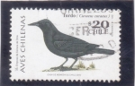 Stamps : America : Chile :  AVE- TORDO