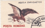 Stamps Romania -  AVE-AGUILA