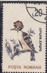 Stamps : Europe : Romania :  AVE-UPUPA