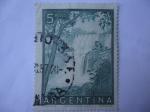 Sellos de America - Argentina -  Cataratas del Iguazú - Una de las Sietes Maravillas del Mundo.