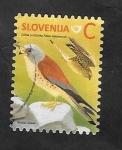 Stamps : Europe : Slovenia :  Falco naumanni, cernícalo primilla