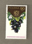 Stamps Poland -  Grosellas