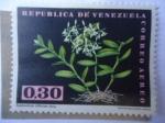 Sellos de America - Venezuela -  orquidea - Epidendrum Difforme Jacq.