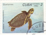 Stamps : America : Cuba :  TORTUGA BASTARDA