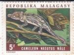 Stamps : Africa : Madagascar :  CAMALEÓN