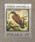Stamps Poland -  Halcón