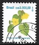 Sellos de America - Brasil -  Hibiscus pernambucensis