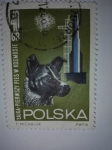 Stamps Poland -  Nave