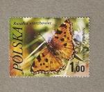 Stamps Poland -  Mariposa Nymphalis polychloros