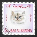 Stamps Asia - United Arab Emirates -  Ras Al Khaima - 4 - Gato