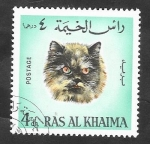 Stamps Asia - United Arab Emirates -  Ras Al Khaima - 35 - Gato