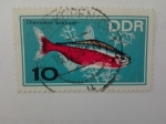 Stamps Europe - Germany -  DDR/RDA Pez