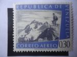 Stamps of the world : Venezuela :  Pico Bolívar, 4.978msnm (Santos Marquina-Mérida)