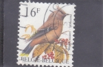 Stamps Belgium -  AVE