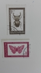Stamps Russia -  Insectos
