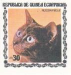 Sellos del Mundo : Africa : Guinea_Ecuatorial : GATO RUSSIAN BLUE