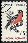 Sellos de Europa - Rumania -  Eurasian Bullfinch