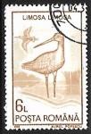 Stamps Romania -  Limosa limosa