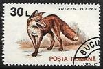 Stamps Romania -  Vulpes vulpes