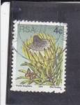 Stamps : Africa : South_Africa :  FLORES-