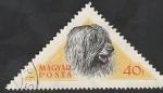 de Europa - Hungría -  1190 - Perro de raza húngaro