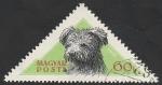 de Europa - Hungría -  1192 - Perro de raza húngaro