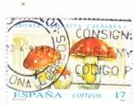 Stamps : Europe : Spain :  SETAS (36)