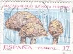Sellos del Mundo : Europa : España : SETAS (36)