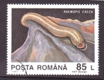 Stamps of the world : Romania :  serie- invertebrados