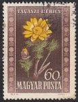 Stamps Europe - Hungary -  965 - Flores