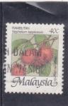 Sellos de Asia - Malasia -  rambután