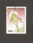 Sellos de Africa - Guinea -  Flor Paphiopedilum ernest