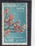 Stamps Somalia -  FLORES-adenium somalense