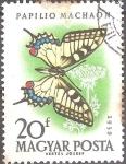 Sellos del Mundo : Europa : Hungría : Mariposas-Cola de golondrina (papilio machaon).