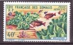 Stamps Somalia -  serie- Corales