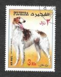 Stamps : Asia : United_Arab_Emirates :  Galgo Borzoi